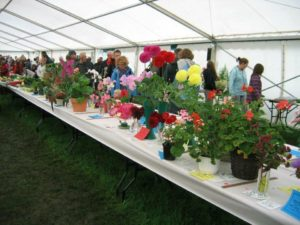 Flower arrangements at Malham Show